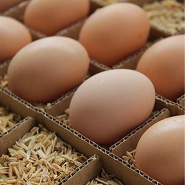 【生鲜禽蛋】 天子湖桑园 散养仙鸡蛋 20枚礼盒 16010