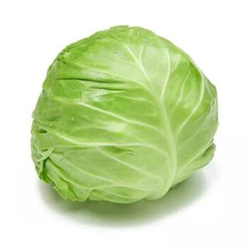 【生鲜蔬菜】兰州包心菜 约5斤