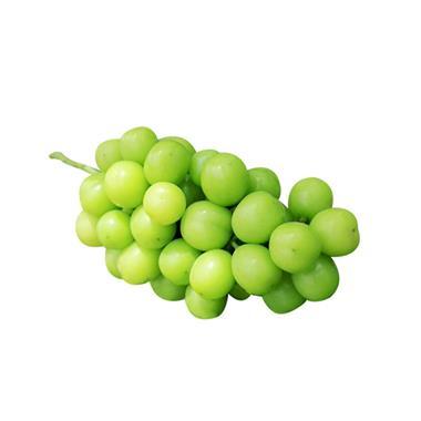 【嘉兴】阳光玫瑰葡萄 约1.4-1.6斤/份